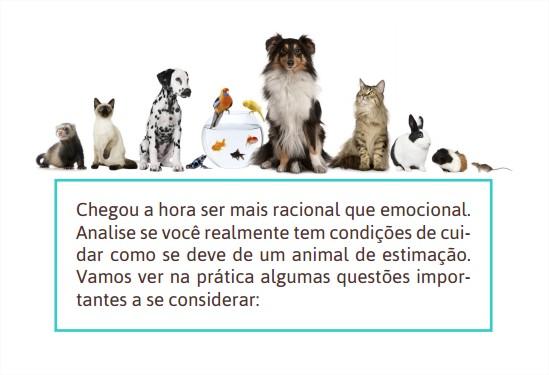 Dicas-Clube-das-Ferinhas-Blog-Boas-Dicas