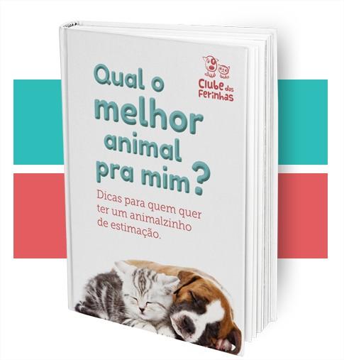 E-book-Clube-das-Ferinhas-Blog-Boas-Dicas