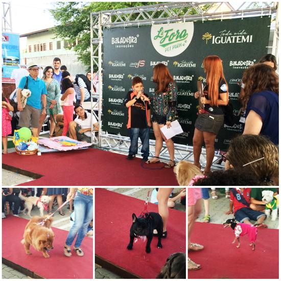 Desfile-Dogs-La-Fora-Pet-Park-Blog-Boas-Dicas