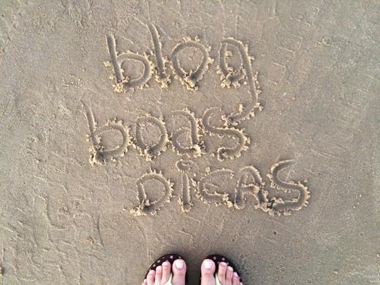Flecheiras-Blog-Boas-Dicas-08