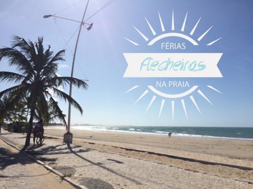 Flecheiras-Blog-Boas-Dicas-10