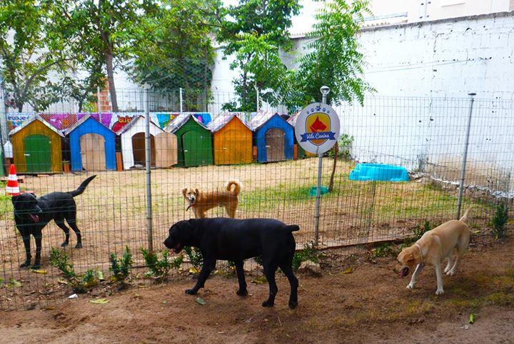 Hotel-Vila-Canina-Blog-Boas-Dicas-2