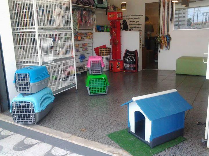 Lar-do-Pet-Blog-Boas-Dicas