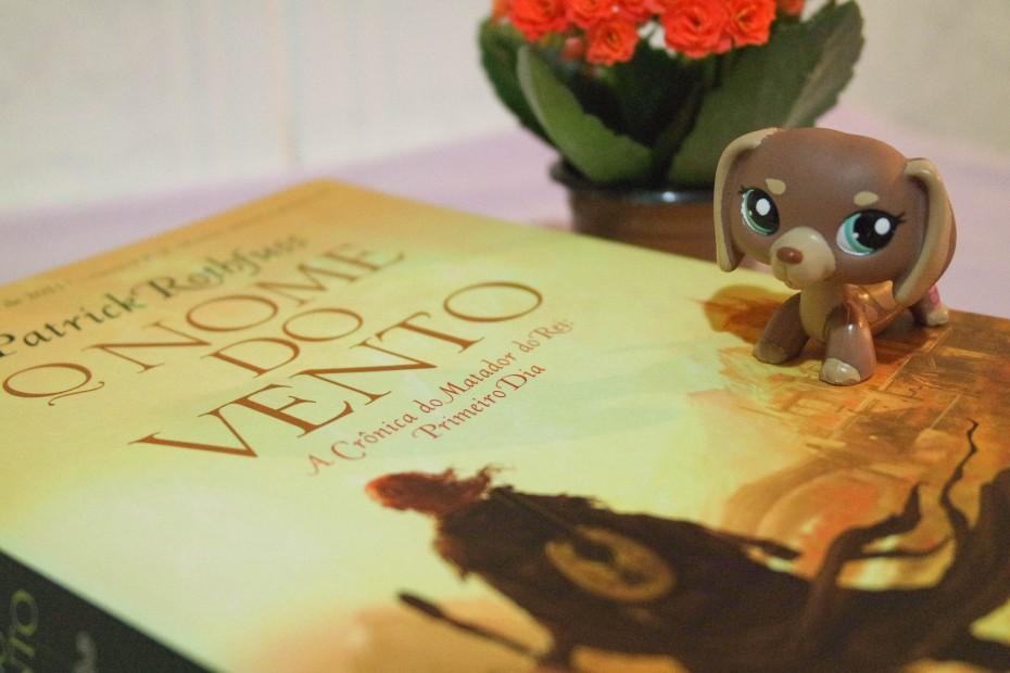 O-Nome-do-Vento-Blog-Boas-Dicas-A-Carta-Violeta