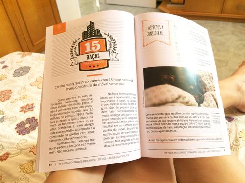 Focinhos-Urbanos-Blog-Boas-Dicas-02