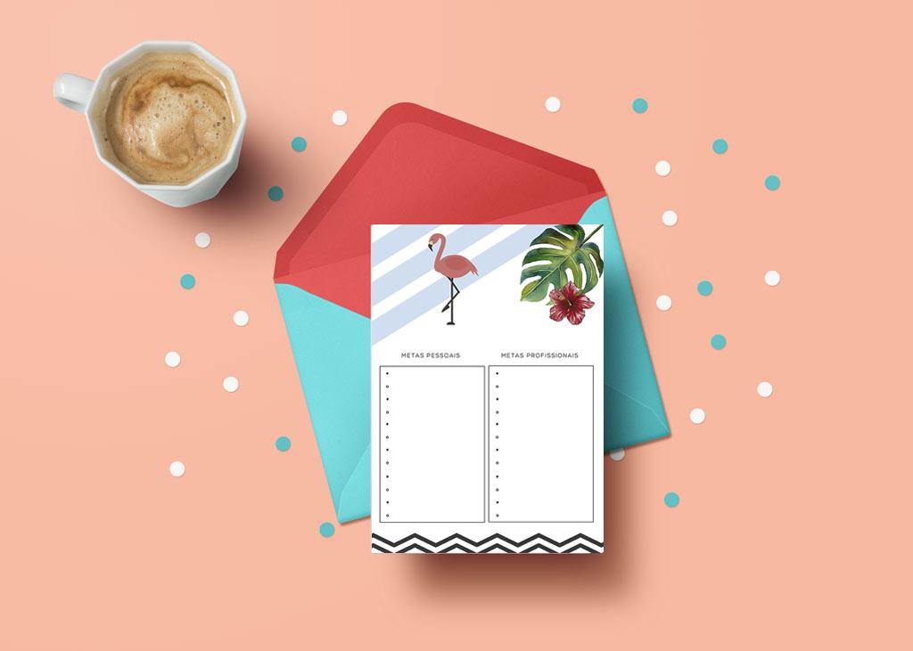 planner-2017-blog-boas-dicas-metas