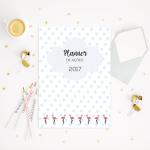 Planner Flamingo: para um 2017 com mais foco e realizações!