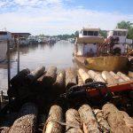 Destino: Tigre, Argentina – Parte #03